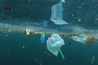 cannuccia plastica nel mare